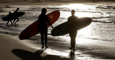 Surfista morre após ataque de tubarão em Nova Gales do Sul