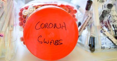 """Cientistas identificam proteína que """"torna o coronavírus altamente infeccioso"""""""