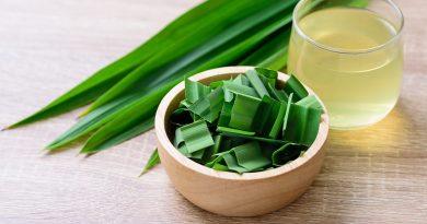 O que é Pandan? Benefícios, usos, sabor e substitutos