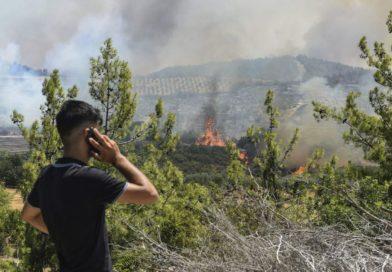 Maioria dos incêndios florestais na Turquia sob controle